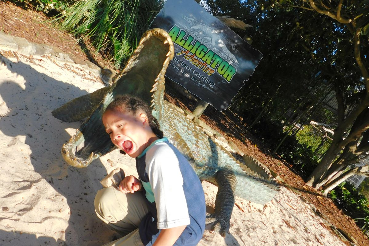 Is Alligator Adventure in Myrtle Beach Worth It?